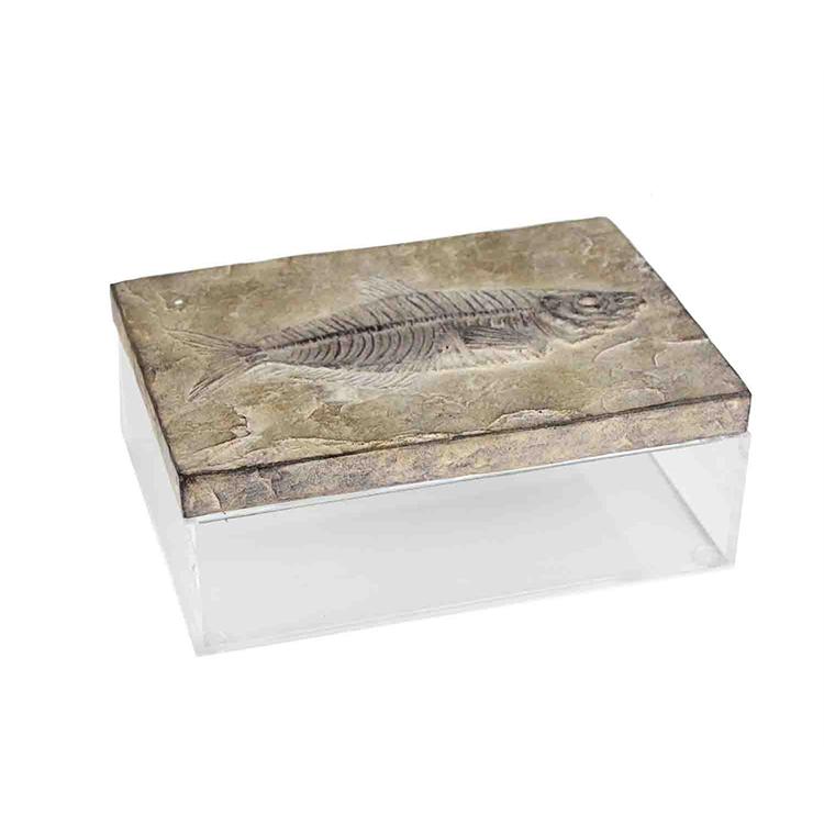 Caja de Fossil grande