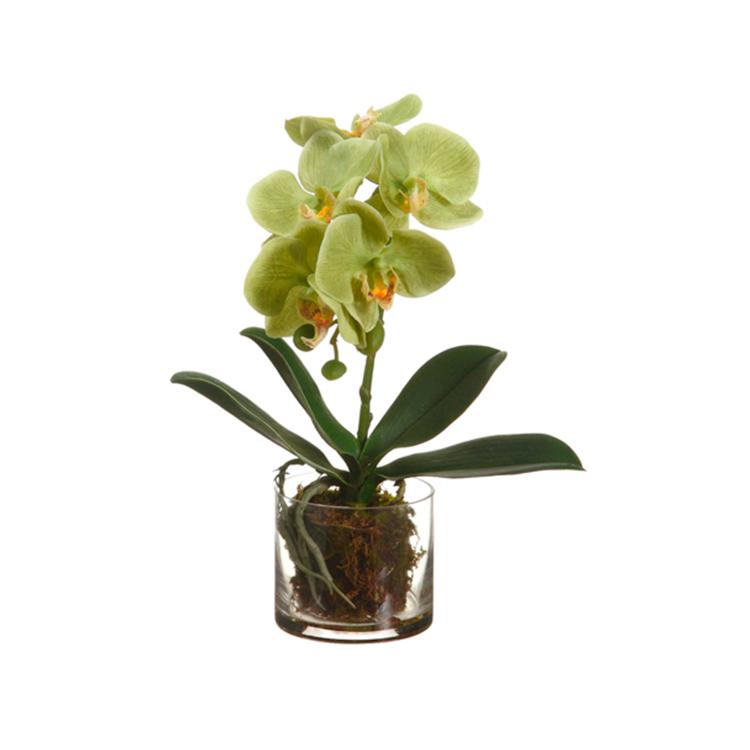 Orquidea verde con base de cristal