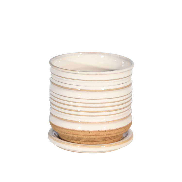 Maceta blanca con plato