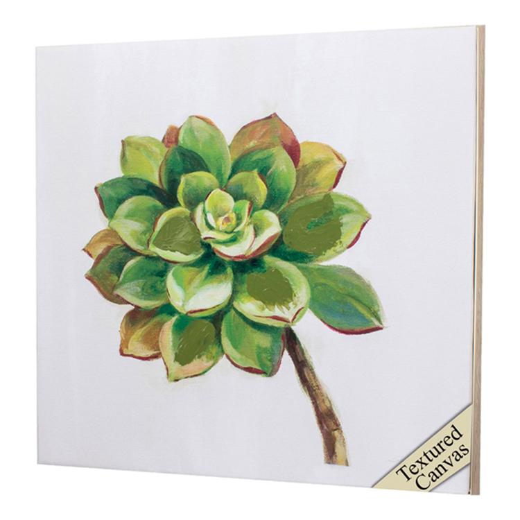 Cuadro Succulents III