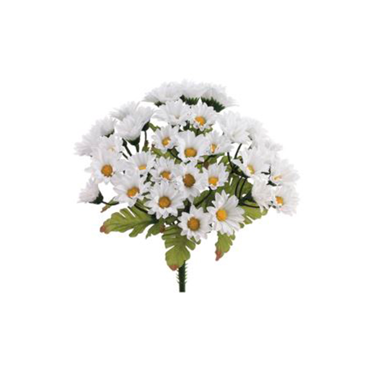 Bouquet Daisy blanco