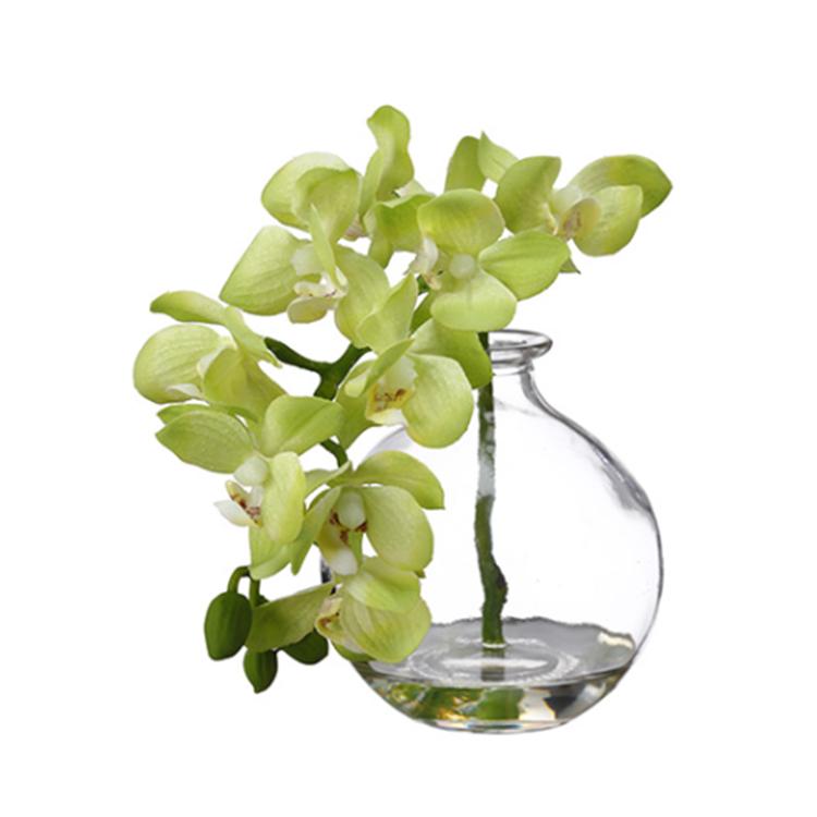 Orquídea verde con base