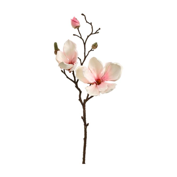 Vara de Magnolia Blanca con Rosa