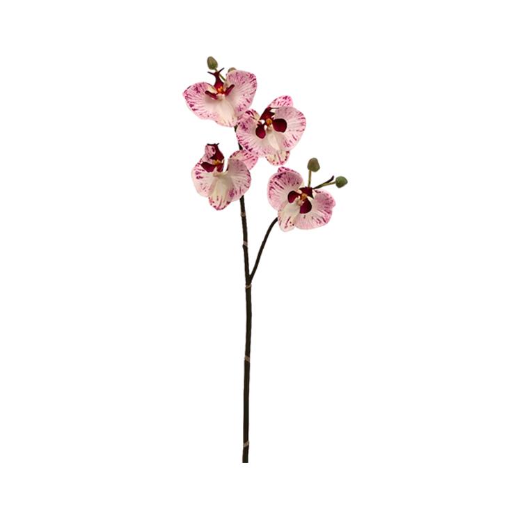 Vara de Orquidea Rosa